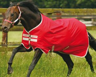 HorsewareAmigo1200D